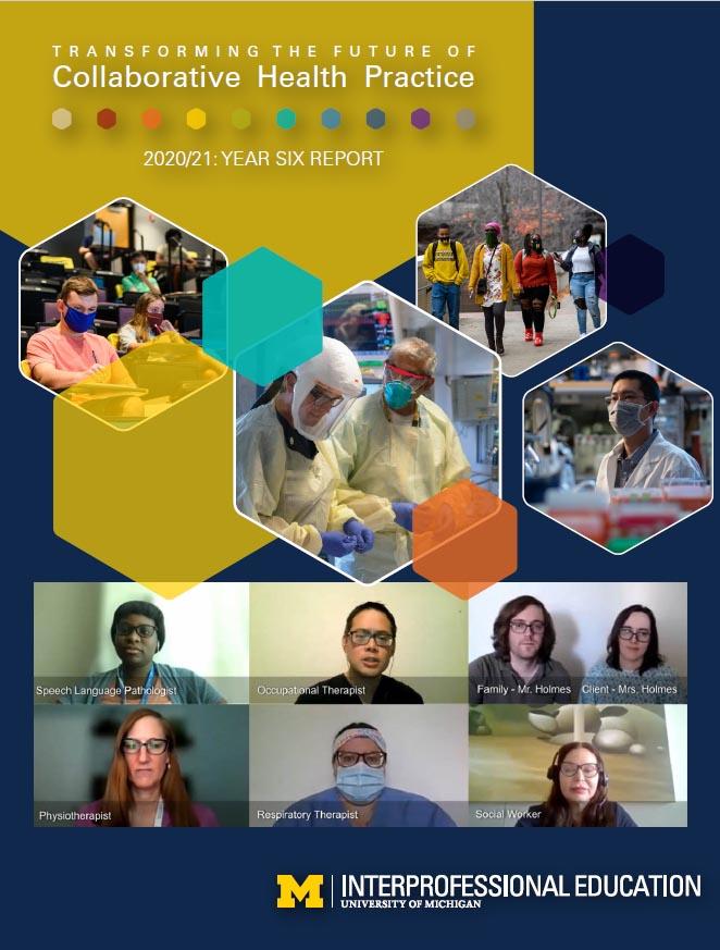 Click for U-M Year 6 IPE annual report